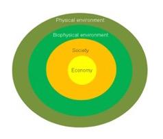 Økologisk økonomi